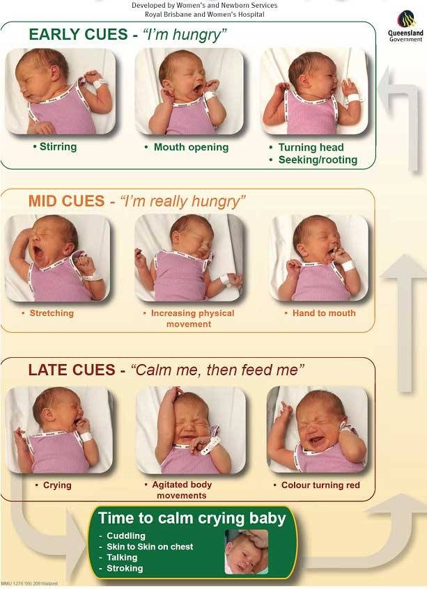 scaun bebelusi alaptati san