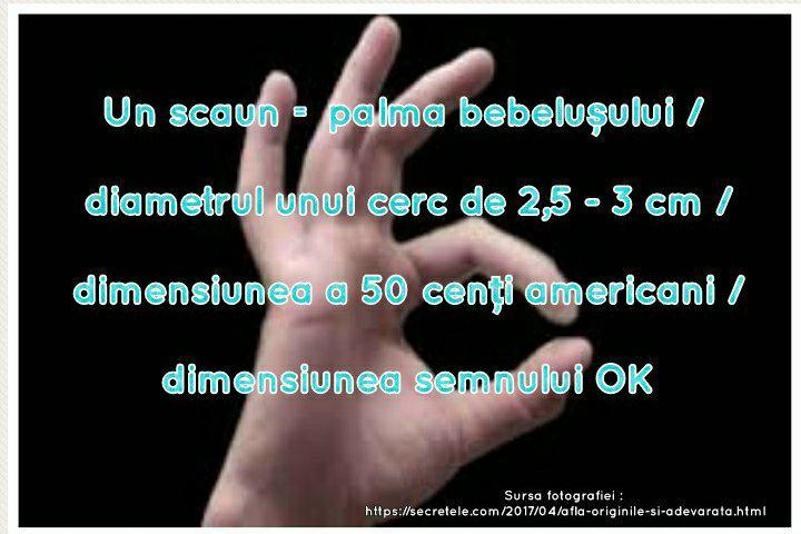 29547414_1893213274036495_2142862459_n