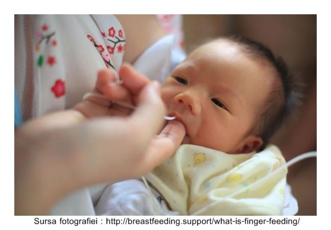 what-is-finger-feeding-w